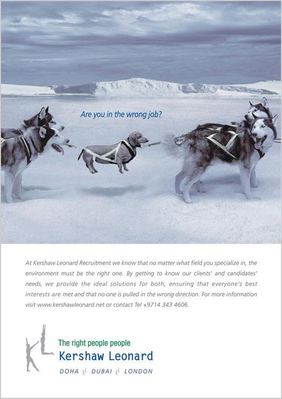 реклама дизайн принты