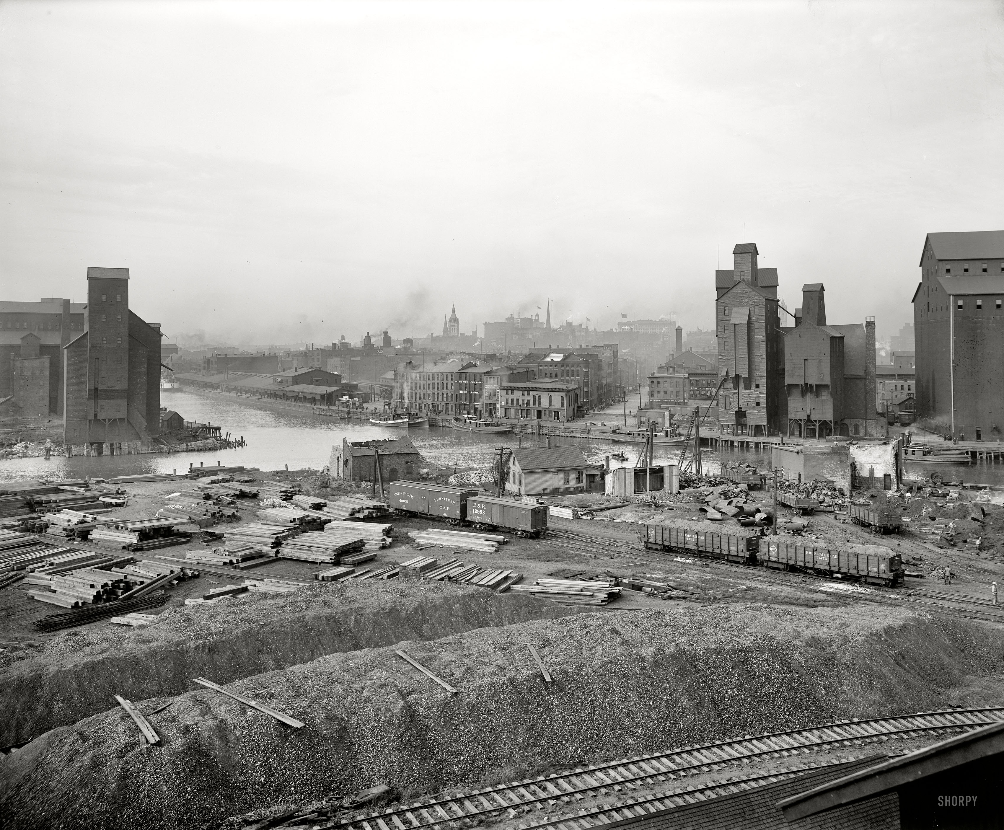 Buffalo_1900